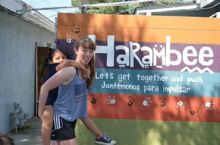 harambe1